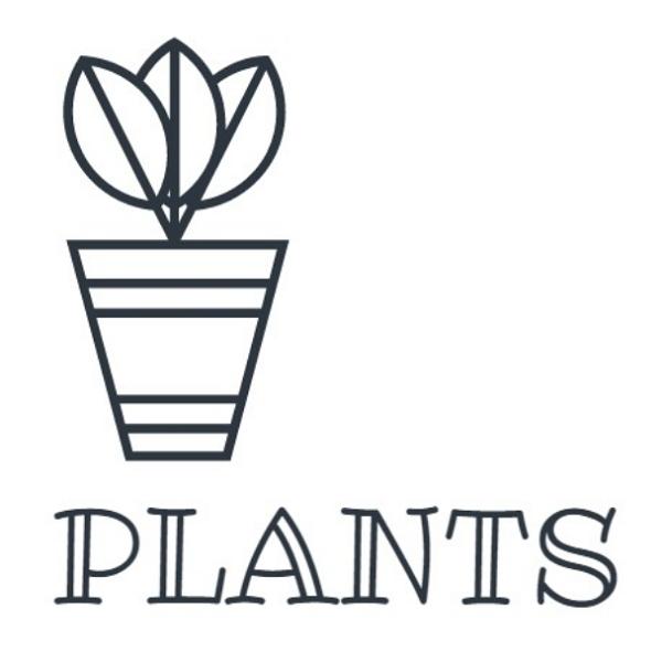 植物<インテリアグリーン>