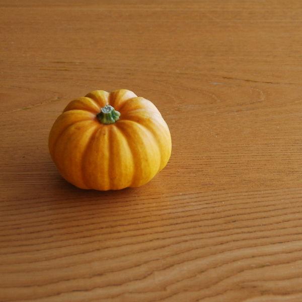 20140930_Halloween 02