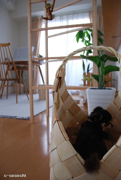 130528_フィンランドのモミの木バスケット01