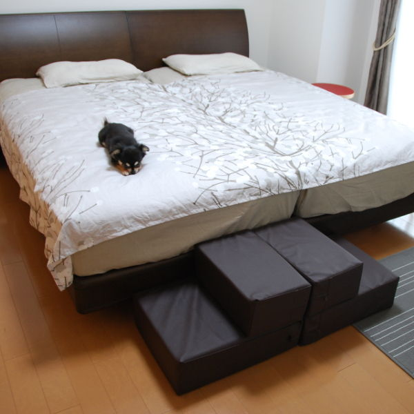 20140904_寝室のドッグステップ02