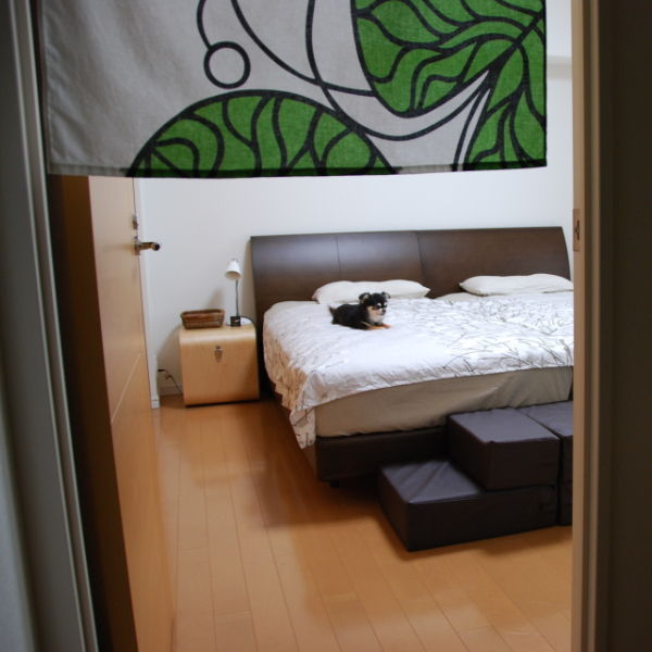 20140904_寝室のドッグステップ01