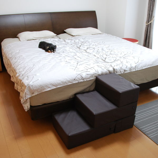 20140904_寝室のドッグステップ04
