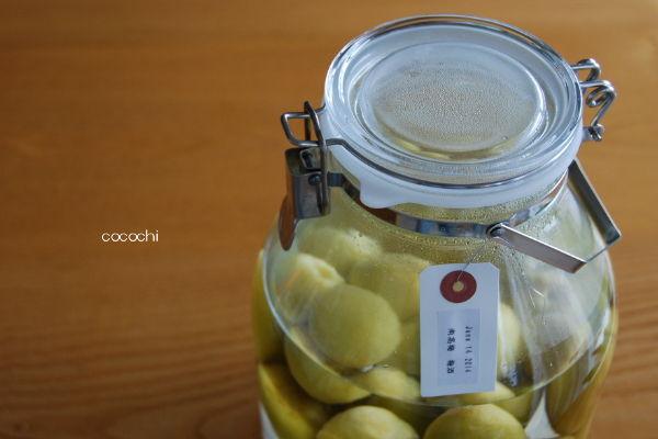 20140618_南高梅の梅酒つくり01