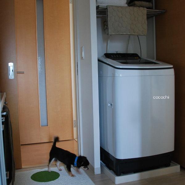 20140708_新洗濯機設置05